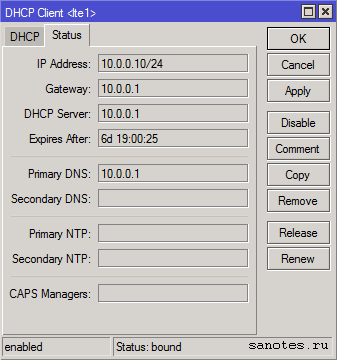 winbox-dhcp-client-lte1-status